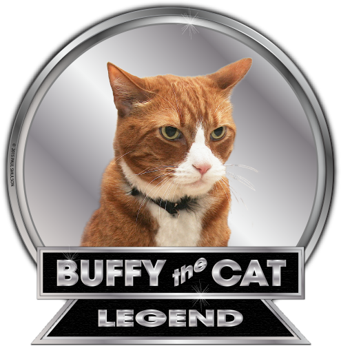 Buffy the Cat - Welcome to the official Buffy the Cat website. Buffy knows how to make the most of all nine lives. He's the world's greatest copycat of human activities and a legend in his own lifetime.