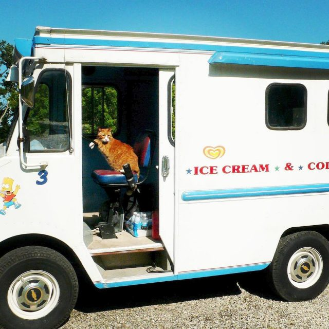 I love delivering ice cream except for the music thatshellip