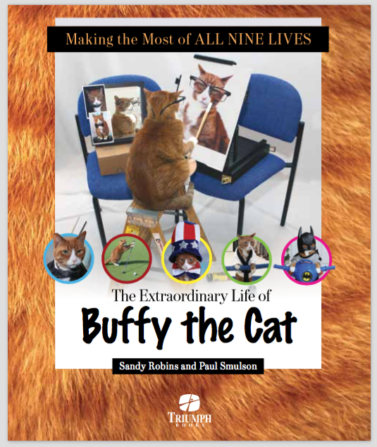 Making the Most of All Nine Lives -  The Extraordinary Life of Buffy the Cat